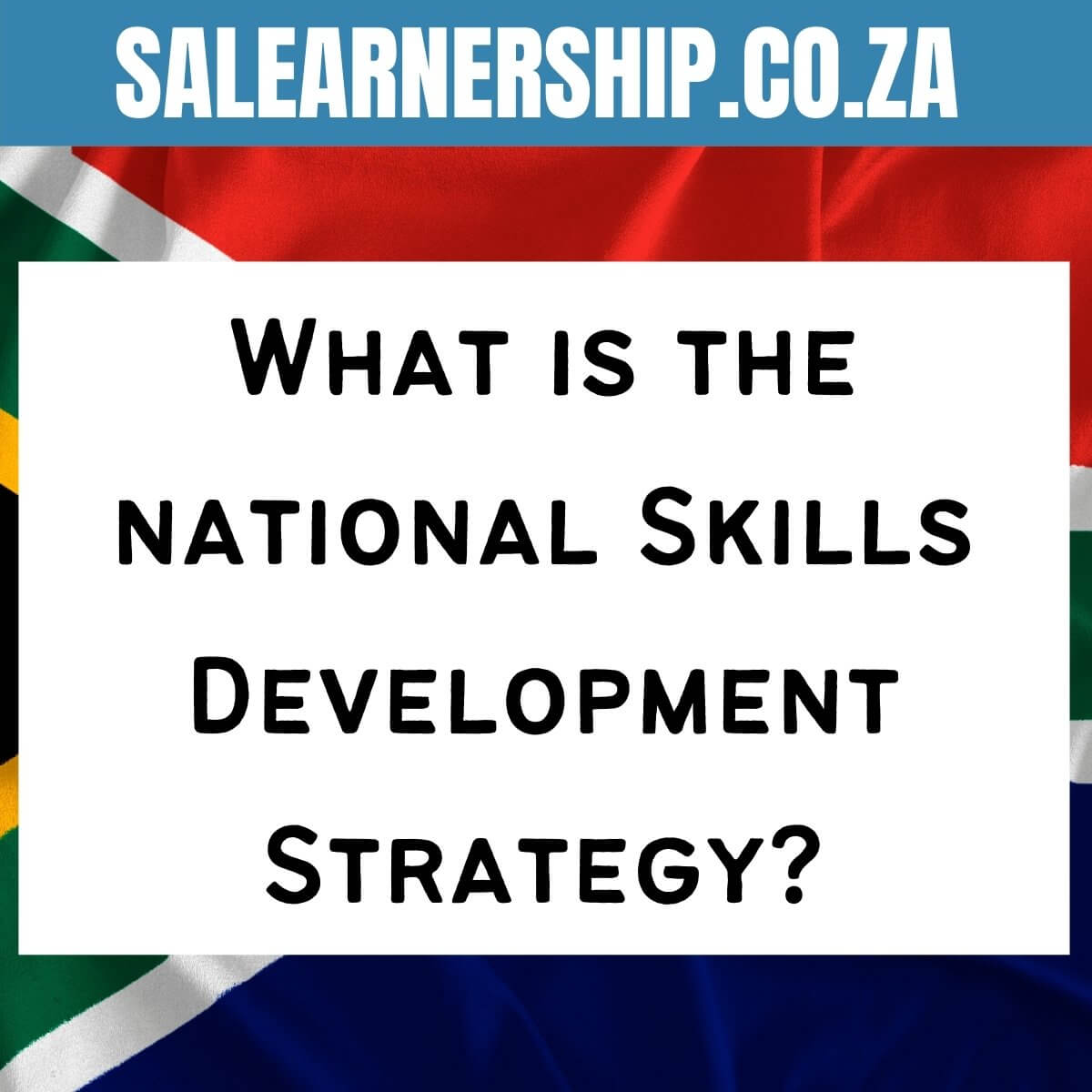 What is the national Skills Development Strategy_